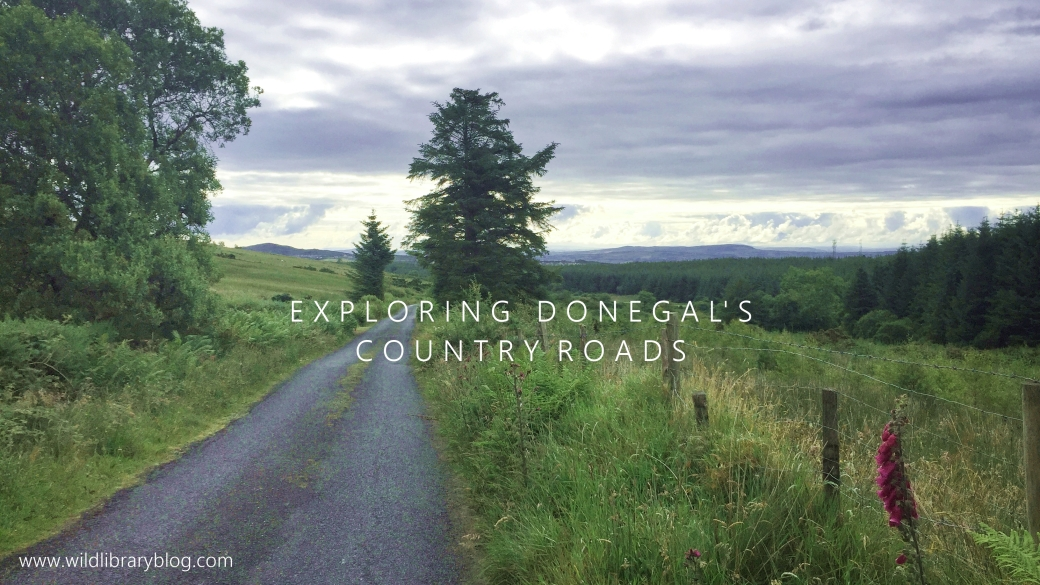 donegal's country roads_wild library blog