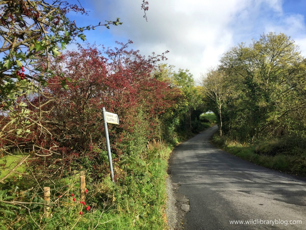 Walking on Donegal's country roads_wildlibraryblog3