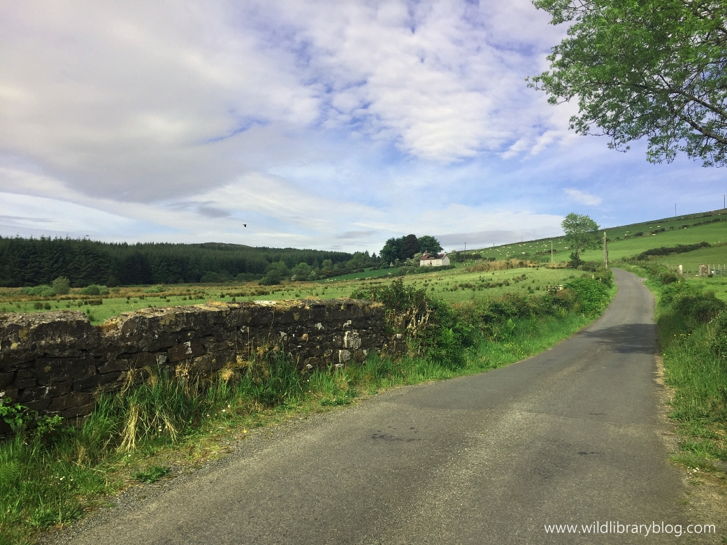 Walking on Donegal's country roads_wildlibraryblog5